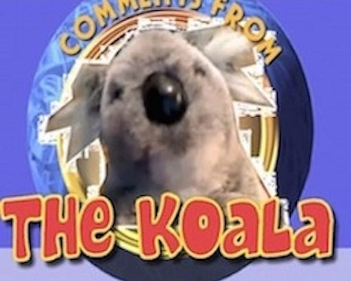 Happy 5th Anniversary to Comments from the Koala!